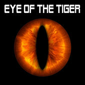 Eye of the Tiger by Eye Of The Tiger