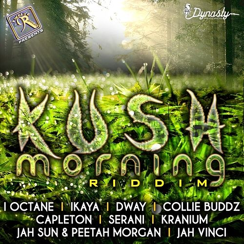 Kush Morning by Various Artists
