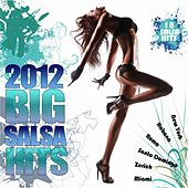 Big Salsa Hits 2012 by Various Artists