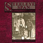 Ten Man Mop Or Mr Reservoir Butler Rides Again by Steeleye Span