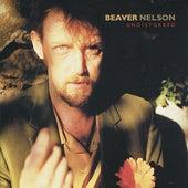 Undisturbed by Beaver Nelson