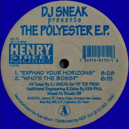DJ Sneak presents The Polyester EP by DJ Sneak