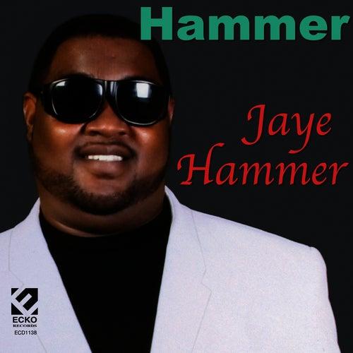 Hammer by Jaye Hammer