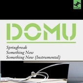 Springbreak / Something New by Domu