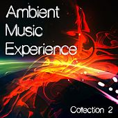Ambient Music Experience, Vol. 2 by Various Artists