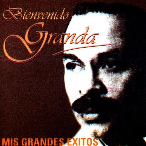 Mis Grandes Exitos by Bienvenido Granda