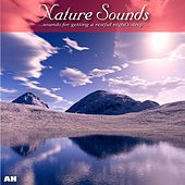 Nature Sounds by Ahanu Nature Sounds