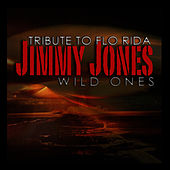 Wild Ones (Tribute To Flo Rida) by Jimmy Jones