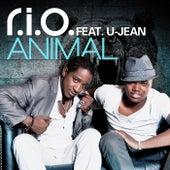 Animal by R.I.O.