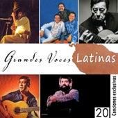 Grandes Voces Latinas. 20 Canciones Exclusivas by Various Artists