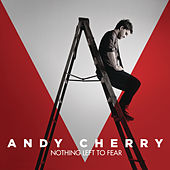 Nothing Left To Fear by Andy Cherry