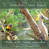Birds of the North Australian Tropical Rainforest by Australian Nature Sounds
