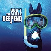 The Deep End Vol. 2 by Gov't Mule