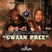 Gwaan Pree by Blak Ryno
