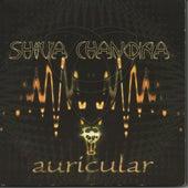 Auricular von Shiva Chandra
