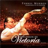 Explision De Victoria by Fernel Monroy