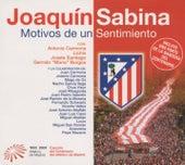 Motivos De Un Sentimiento by Joaquin Sabina