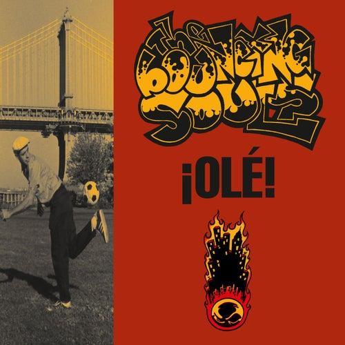 Ole von Bouncing Souls