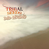 Did Wrong by Tribal Seeds