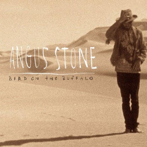 Bird On the Buffalo by Angus & Julia Stone