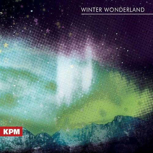 Winter Wonderland by Evelyn Glennie