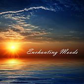 Enchanting Moods by Various Artists