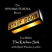 The Kitchen Sink by Shyama Perera