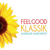 Feel Good Klassik von Various Artists