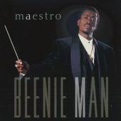 Maestro by Beenie Man