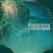 Moonlight Revival by Ponderosa