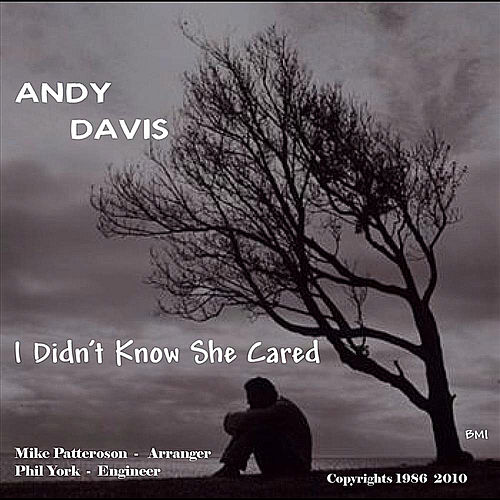 I Didn't Know She Cared by Andy Davis