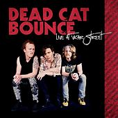 Live At Vicar Street by Dead Cat Bounce