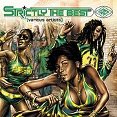 Strictly The Best Vol 33 by Various Artists