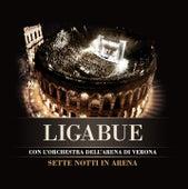 Sette notti in Arena by Ligabue
