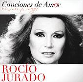 Canciones De Amor by Various Artists
