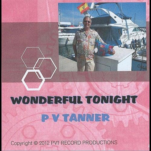 Wonderful Tonight by P V Tanner