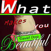 What Makes You Beautiful by David Dog