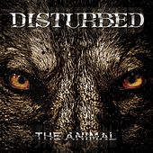 The Animal von Disturbed