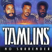 No Surrender by The Tamlins