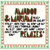 Remixes von Amadou & Mariam