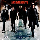 Endless, Nameless by The Wildhearts