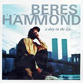 A Day In The Life by Beres Hammond