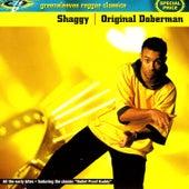Original Doberman by Shaggy