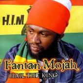 Hail The King by Fantan Mojah