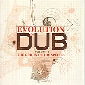 The Evolution Of Dub Vol. 1: The Origin by Various Artists