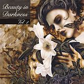 Beauty In Darkness von Various Artists