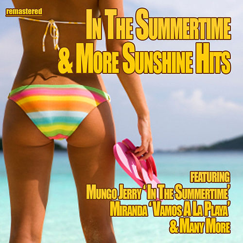 In the Summertime & More Sunshine Hits by Various Artists