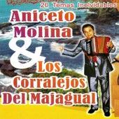 20 Temas Inolvidables by Aniceto Molina
