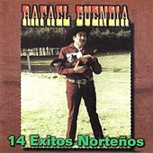 14 Exitos Nortenos by Rafael Buendia