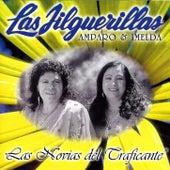 Las Novias del Traficante by Las Jilguerillas